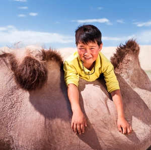Mongolian young boy with camel